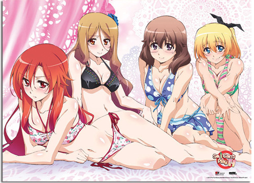 So I Cant Play H Swimsuit Group Wallscroll, an officially licensed product in our So, I Cant Play H! Wall Scroll Posters department.