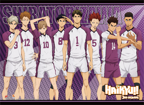 Haikyu!! - Shiratorizawa High School Fabric Poster, an officially licensed product in our Haikyu!! Posters department.