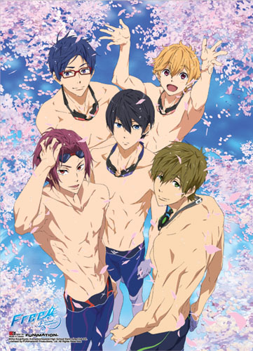 Free! 2 - Group 01 Special Edition Wall Scroll, an officially licensed product in our Free! Wall Scroll Posters department.