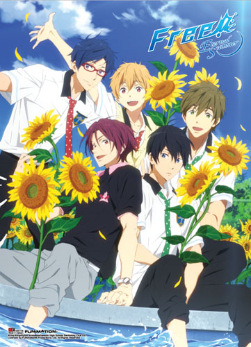 Free! 2 - Group 03 Special Edition Wall Scroll, an officially licensed product in our Free! Wall Scroll Posters department.