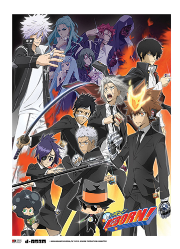 Reborn! - Group C Wallscroll, an officially licensed product in our Reborn! Wall Scroll Posters department.