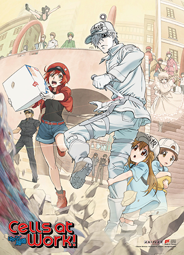 Cells At Work! - Key Art Wall Scroll, an officially licensed product in our Cells At Work! Wall Scroll Posters department.